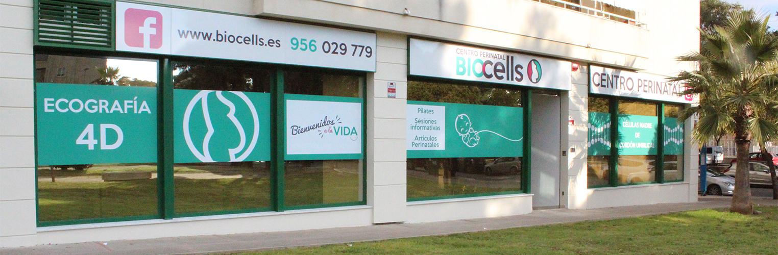 BIOCELLS - Células Madre de Cordón Umbilical | Ecografía 4D - CENTRO PERINATAL Consultas Médicas - 956 029 779 - Jerez de la Frontera.